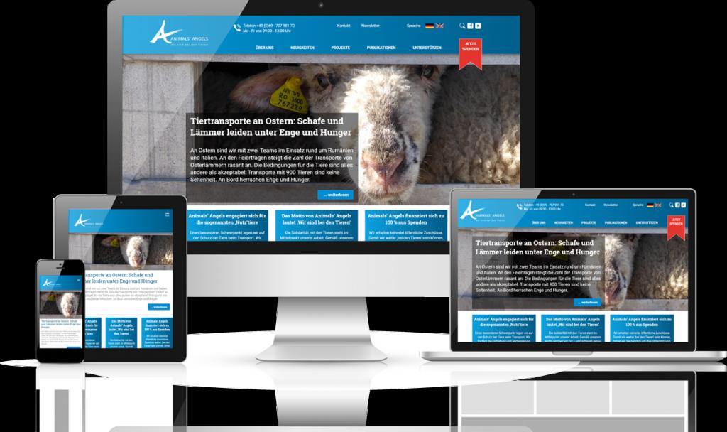team digital realisiert die neue Webseite der Animals' Angels